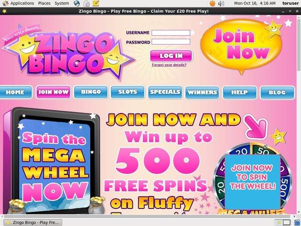 Sign In Zingo Bingo