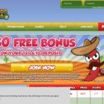 Bingo Gringo Bonus Code Offer